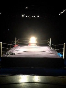 EVILの裏切りと2冠王者戴冠-新日本の「新しいリング様式」
