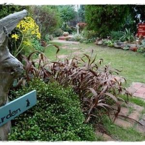 秋色ガーデン(1)