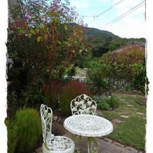 秋色ガーデン(2)