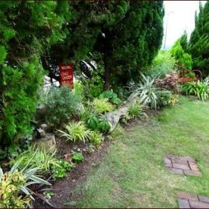 フウチソウとアジサイ西安<庭の植物で作るリース>