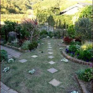 南の庭の植え替えを始める★鉢植えは移動も考えて