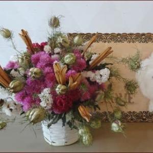 正ちゃんに庭のお花を★クレイジーテンシア