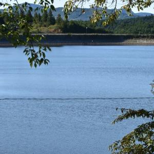 椛の湖とソバの実