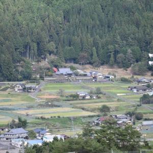 当地の福崎林道を歩く