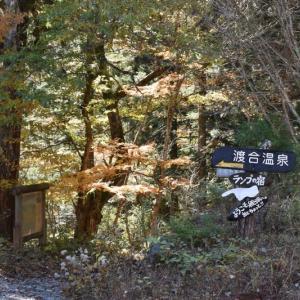 ポツンと一軒家 「ランプの宿 渡合温泉」