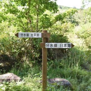 苅安峠の分水嶺