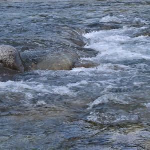 付知川河川敷を歩く