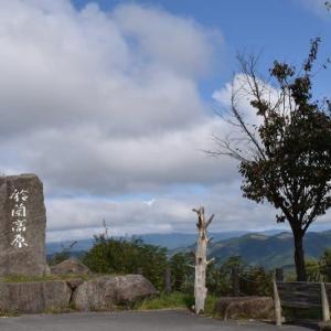 鈴蘭高原で見かけた木の実