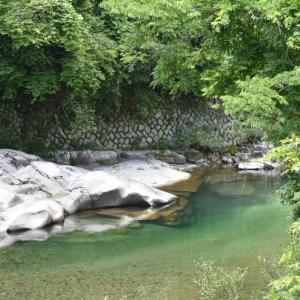 付知川中流を行く