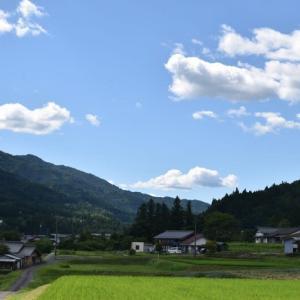 今日の空 (白い雲)