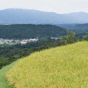 福岡町の夏焼地区
