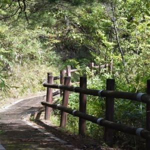 高峰湖遊歩道を行く