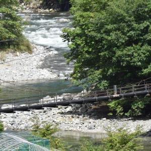 馬瀬川に架かる吊り橋とツリバナ