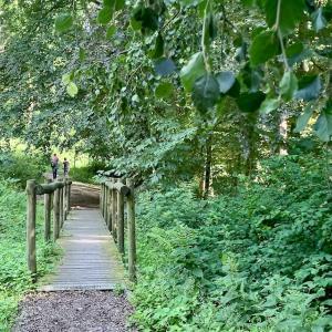 グローネンダールの樹木園 – Arboretum de Groenendaal