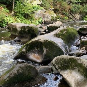 Les roches du diableで森林浴