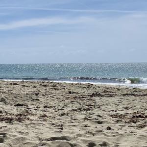 Névezのビーチはタヒチ?