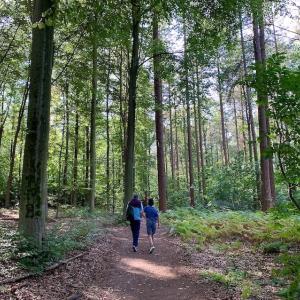 ルーヴェンの樹木園 – Arboretum Heverleebos