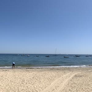 L'île d'Yeuのビーチ