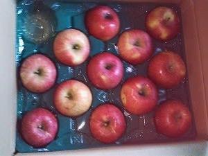 産地直送の・・・リンゴ