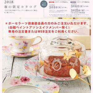 2018年春の限定カタログ♪