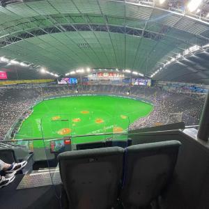 札幌ドームで野球を観ました