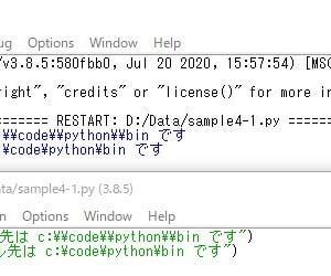 Python--raw文字列