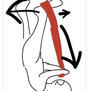 身長を伸ばすストレッチと筋トレを開始する