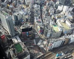 久しぶりの渋谷