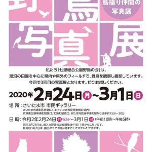 2020年七里総合公園野鳥の会「写真展」