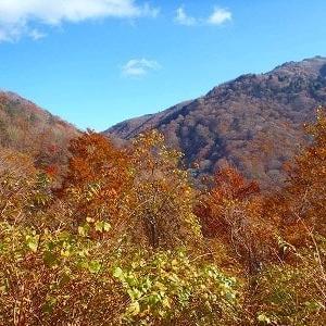 剣山登山口の見ノ越は標高1400m@徳島県