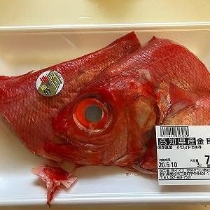 コロナで高級魚が売れない・・・・・余波が来た!