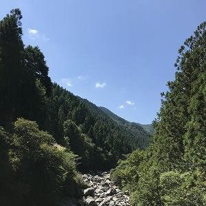 高知の嶺北は自然がいっぱいでのんびりできる