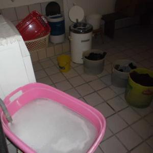 水に恵まれないドイツだから、洗濯機の排水も再利用しなくてはならない節約ぶりっ?