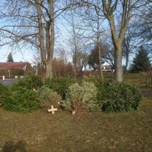クリスマスツリーの使用後の処分方法