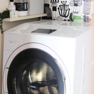 セリアでラスト2個だった品薄商品! 洗濯機にぶら下げたら最強の楽家事グッズになりました。