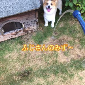 夏でも冷たい(^.^)