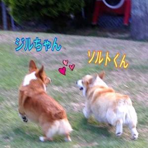 ジルのGW恋愛編♡