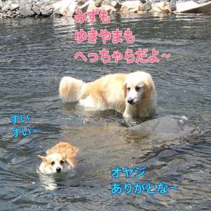 厚かましく生きる(^^)