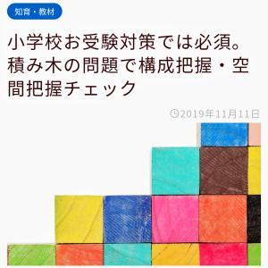 【終】積み木の問題【4歳11ヶ月】