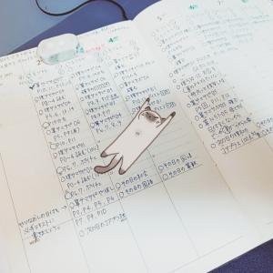 映画と夏の伴走計画【11歳1ヶ月】【6歳7ヶ月】