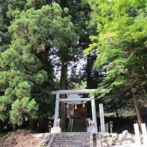 即位の礼の日に、通好みのパワースポット探索~京丹後神社ツアー~