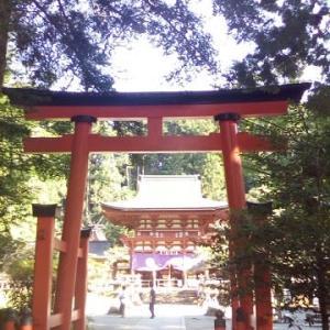 今日は、盛り沢山の奈良の神社ツアーでした。