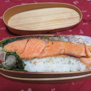 焼塩鮭弁当