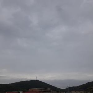 曇り空のせいか蒸し暑さが凄いです。