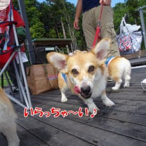 Oh~!29(ニク)の日♪
