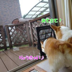 民宿 【アトりん荘】
