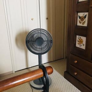 猛暑とコロナ禍を乗り切る!!夏のリビングとラグの手入れにアロマ扇風機