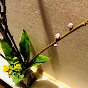 2019年沖縄旅で巡り会った!!Kamanyの琉球ガラス花器&桃の花♪