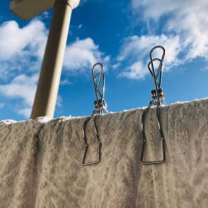 2020年冬の楽天SALEで購入…耐久性のある洗濯バサミ&お気に入りのピンチハンガー