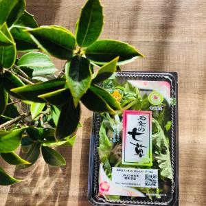 コロナ退散を願って…柳宗理のキッチン道具で作る七草がゆ&高野豆腐2021